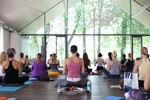 1. Yogadelight Nature Conference | English