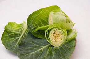 Pointed-cabbage-3450400 640